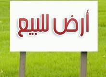 قطعة ارض للبيع في شفا بدران حوض ام العروق
