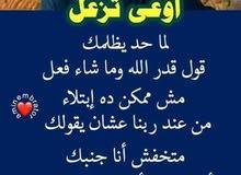 مطلوب برتيشن للايجار شخص مصري
