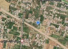 الارض لبيع مكان في الخمس سوق خميس الارض سكاني و زرعيه