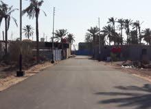 بستان للبيع في جسر خالد شارع زين العابدين