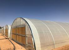 بيوت محمية للزراعة