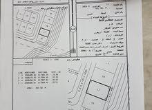 أرض للبيع في سيح الأحمر بدبد 600 متر مربع