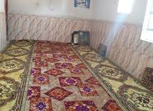 ابو الخصيب محليه طريق سيد حامد قرب محطه البانزين 07725827658