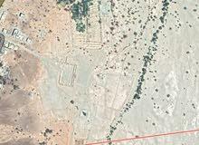 1900هكتار للبيع الجنوب الشرقي بالمملكة المغربية