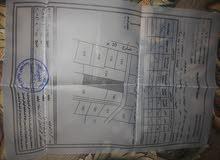بيت حديث البناء مساحة 154 م مرخص على ارض 417 م قوشان الأرض مشترك مع شخص أخر