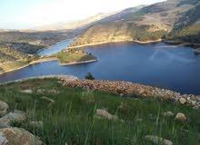 قطعة ارض مطلة على سد الملك طلال باطلالة خلابة تصلح للزراعة والسياحة والاستجمام