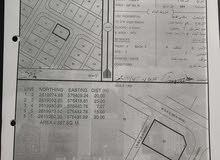 فرصه للجادين بسعر أقل من سعر السوق أرض سكنية بولاية بركاء/ العقدة /4