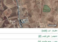 ارض للبيع في اربد ...
