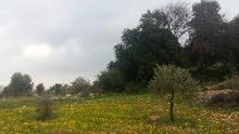 قطعة ارض سكنيه للبيع...حوض الميدان الشمالي من اراضي حواره