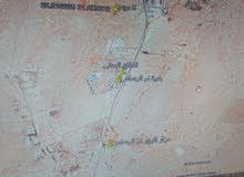 5 دونم جنوب عمان ام الرصاص