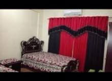 شقه مفروشه غرفتين في المعموره شارع الستين بالقرب من طلمبه بشااائر