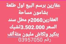وفاء منصور