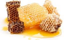 """""""العسل الحضرمي"""" لبيع العسل بالجملة"""