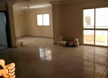 for rent in Cairo Maadi apartment