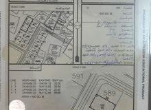 أرض سكنية في الأشخرة مساحة 600 متر مربع للبيع
