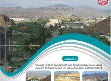 علي طريق حتا عمان تملك ارض سكنية للبيع بحوض 3 بسعر (94) الف درهم شامل كل شي