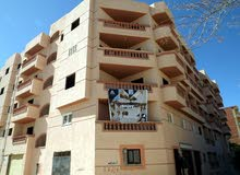 for sale apartment in Alexandria  - Agami