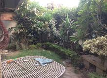 شقة للايجار دور ارضي مدخل خاص وحديقة جميع الاغراض بالقرب من مترو معادي