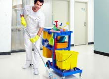 خدمات تنظيف عامه
