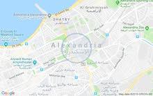 apartment for rent - Alexandria