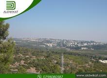 ارض للبيع في اجمل مناطق بدر الجديدة المساحة 1210 م