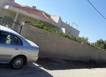 مزرعه مع بيت بالقرب من الجامعه الالمانيه في مادبه