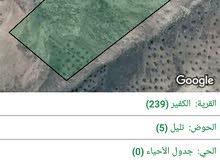 قطعة أرض 19.5 دونم في جرش في قرية الكفير