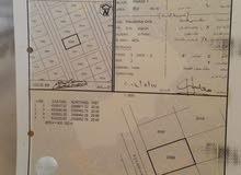 ارض للبيع خاف اللولو توزيع الضباط المكان مرتفع رقم القطعه 2006