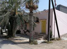 للإيجار منزل في ولاية صحار الصباره على البحر