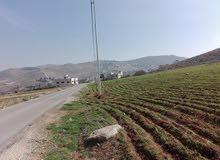 ارض 3.5 دونم في ببرين حوض الحبل