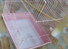 قفص متوسط للطيور