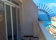 شقة فيو البحر ميامى