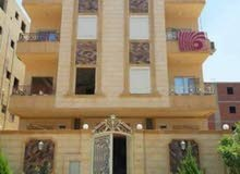 شقه امام جامعة بدر كاش