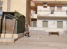 محافظة الغربية مركز زفتي شارع الجيش بحوار مسجد الشحري