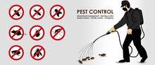 مكافحة الحشرات Pest Control