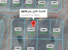 ولاية العامرات مدينة النهضة  الامتداد الاول رقم الارض 6070  مساحة الأرض 600 متر