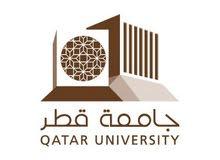 University Teacher