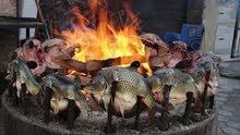 مطلوب طباخ سمك مسكوف