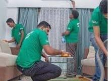 شركة نور البدر للتنظيف ومكافحة الحشرات