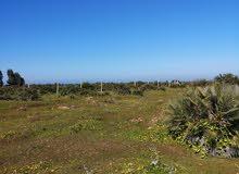 أرض فلاحية للبيع مساحتها 22 هكتار بمدينة بوزنيقة