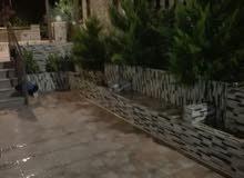 شقة ارضية مفروشة للايجار في عبدون بالقرب من السفارة القطرية والكويتية والامريكية