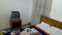 غرف للايجار بالاسكندرية