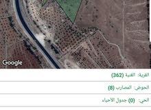 اراضي الزرقاء - قرية القنية - حوض المصارب - مزرعة من المالك - بسعر مغري