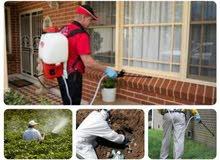 تنظيف المباني القديمة والجديدة باحدث الطرق العالمية ومكافحة الحشرات مجانا
