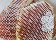 لجميع انواع العسل الطبيعي 1440 هـ  0538738915