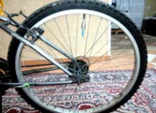 sportex mountain bike