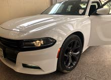 New 2017 Dodge Charger for sale at best price