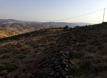 ارض مساحة 1250 متر في جرش