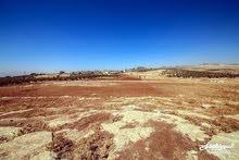 ارض بدر الجديده 1.8 دونم قرب الكاشف للبيع