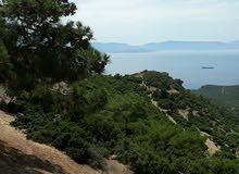 Turkey seaview land in Canakkale for sale.